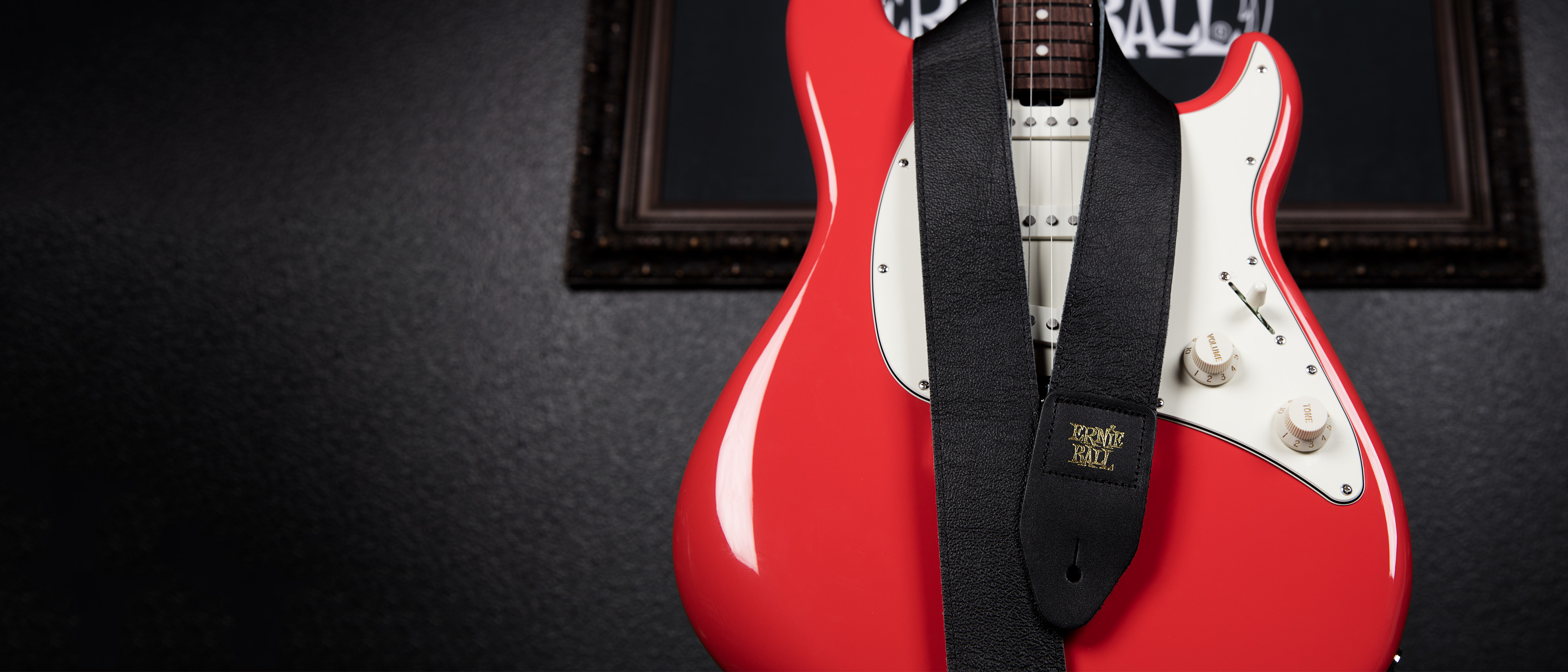 how to watch ernie ball puresuit of tone tom delong