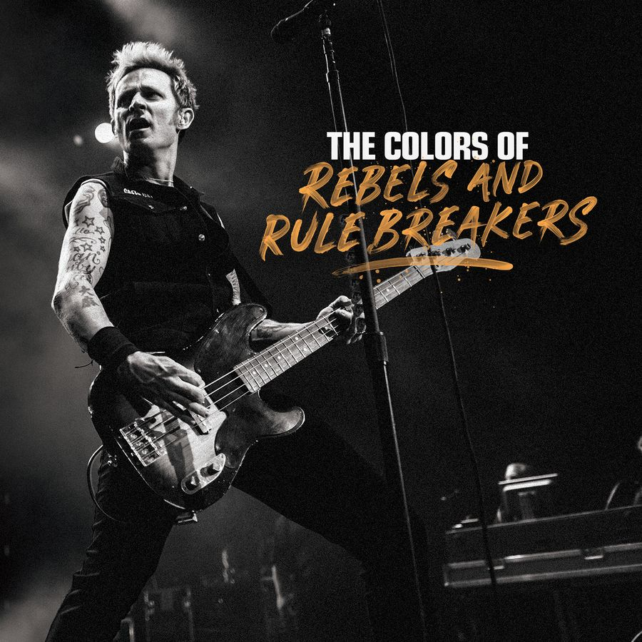 Electric Guitar Strings Acoustic Bass And A Wiring Output Jack Prs Colors Of Rebels Rule Breakers